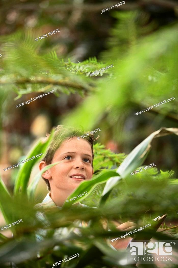 Stock Photo: Boy in Forest.