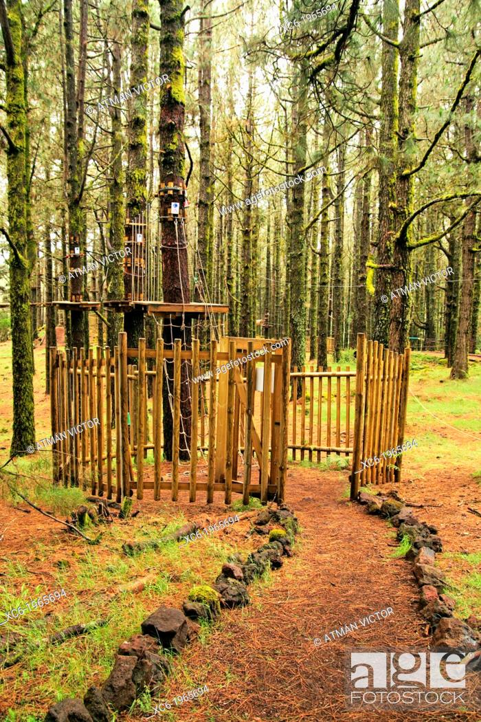 Stock Photo: people in Forestal Park . Theme park in Tenerife island Spain.