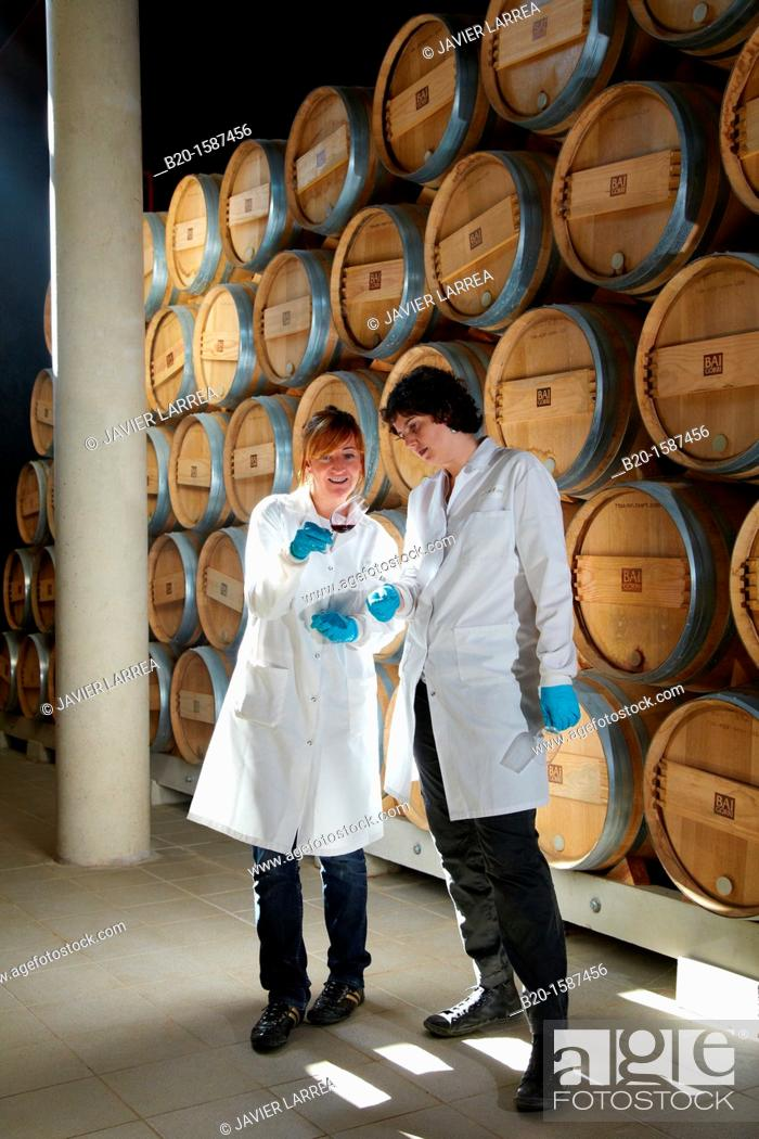 Stock Photo: TECNALIA Researchers conducting a quality control of wine during the course of breeding in the barrel cellar, Bodegas Baigorri, Samaniego, Araba, Rioja Alavesa.