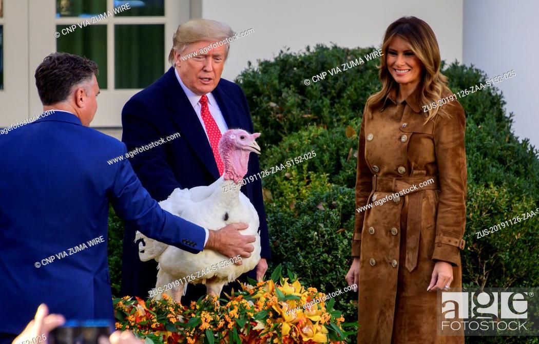 Stock Photo: November 26, 2019, Washington, District of Columbia, USA: United States President Donald J. Trump pardons the National Thanksgiving Turkey in the Rose Garden of.