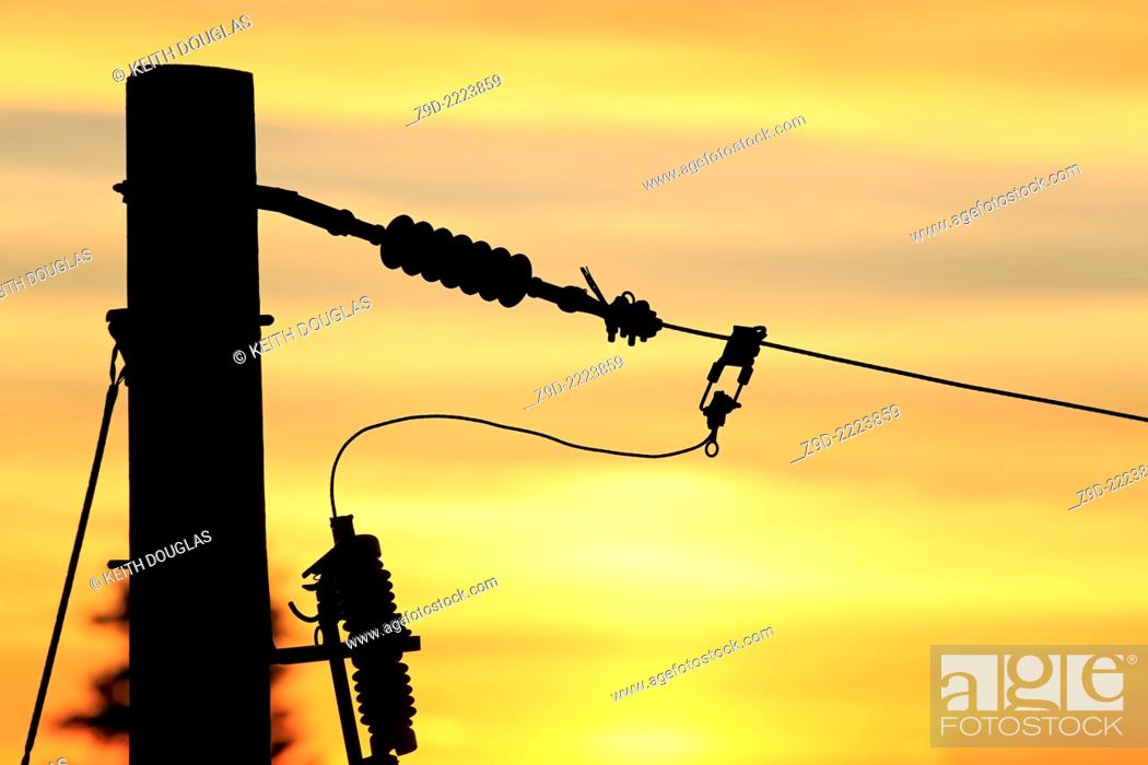Stock Photo: Conductors on power pole at sunset, Nanaimo, Vancouver Island, British Columbia.