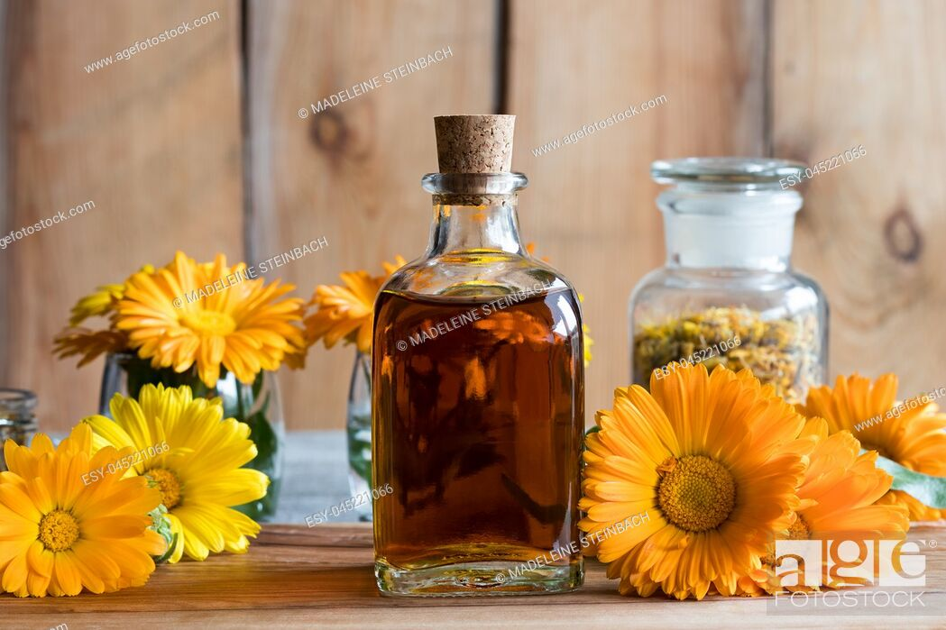 Stock Photo: A bottle of calendula (marigold) tincture, with orange and yellow calendula flowers.