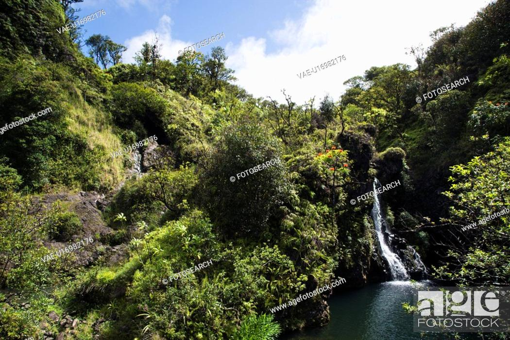 Stock Photo: Waterfall surrounded by lush green vegetation in Maui, Hawaii.