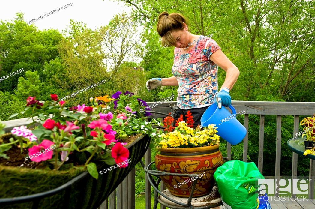 Stock Photo: Woman potting flowers on back porch deck.