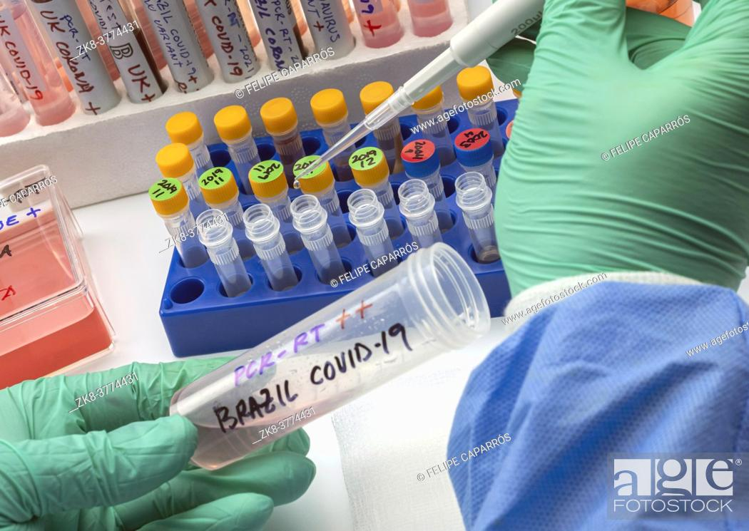 Stock Photo: Scientist holds vial of new Brazilian covid-19 strain in research, conceptual image.