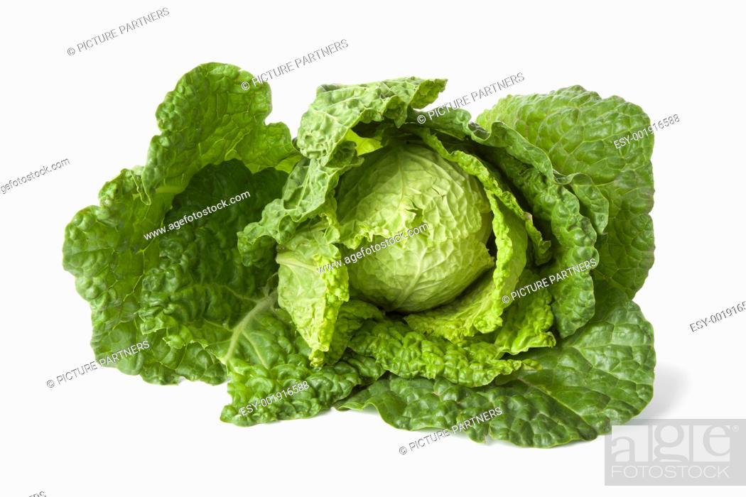 Stock Photo: Savoy cabbage on white background.