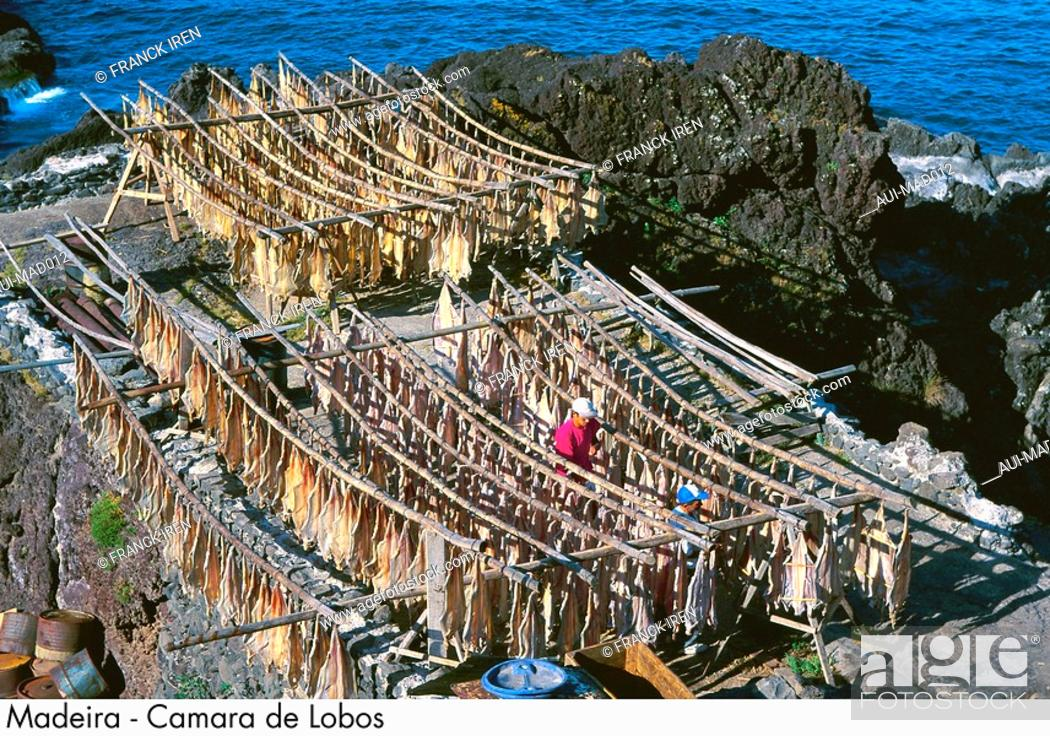 Stock Photo: Portugal - Madeira - Camara de Lobos.