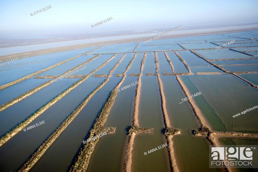 Stock Photo: Guadalquivir River aerial view with cultivated fields, Cadiz, Doñana Natural Park, Spain, Europe.