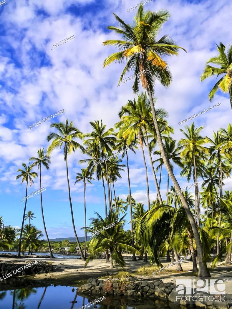 Imagen: Honaunau Beach. Hawaii. USA.