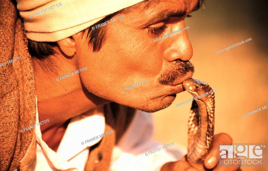 Stock Photo: A snake charmer is kissing a cobra at Delhi  India.