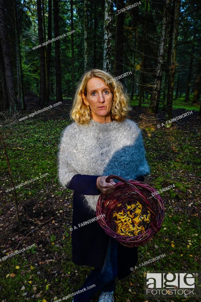 Imagen: Gotland, Sweden A woman stands with a basket of freshly picked chanterelle mushrooms in the fall.