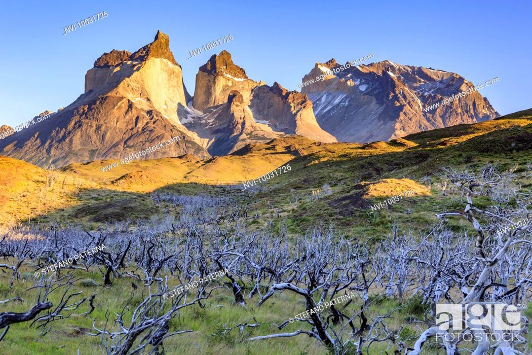Photo de stock: Cuernos del Paine at sunrise, Torres del Paine National Park, Patagonia, Chile.