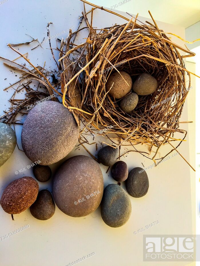 Stock Photo: Nest eggs in stone: a real nest made with twigs and straw. Smooth stones of various shapes and sizes substitute for eggs in a modern art piece.