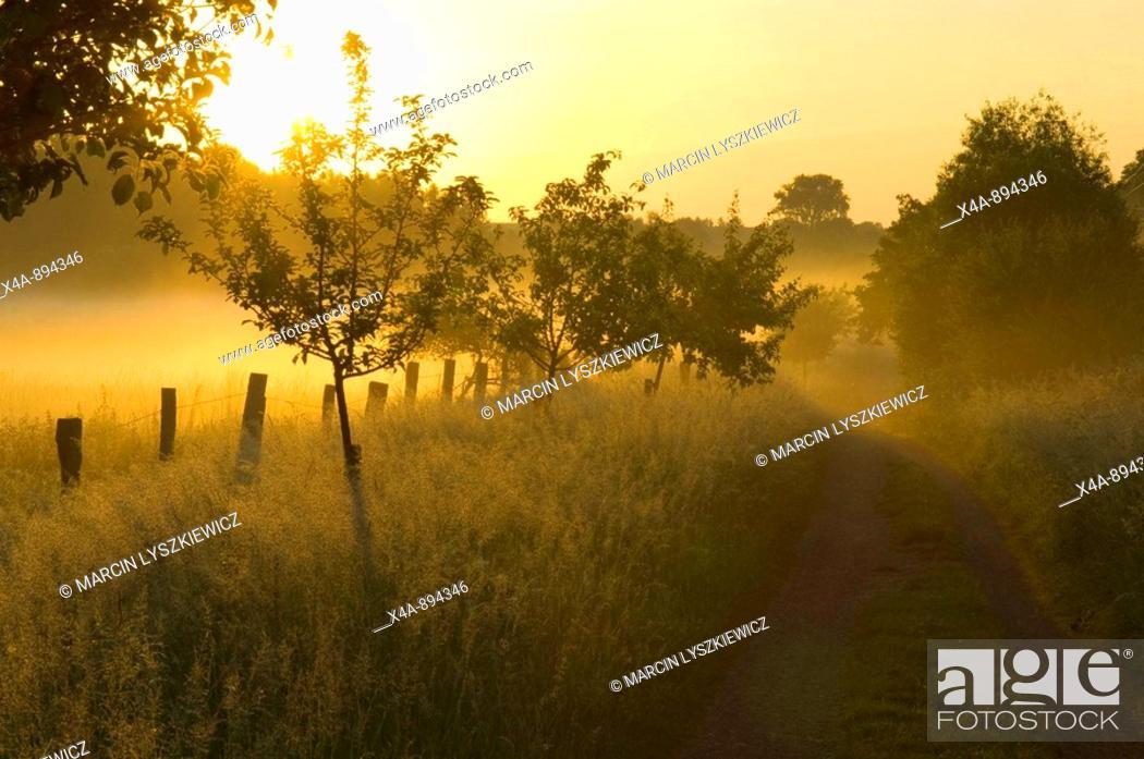 Stock Photo: Landscape, near Braunschweig, Lower Saxony, Germany.