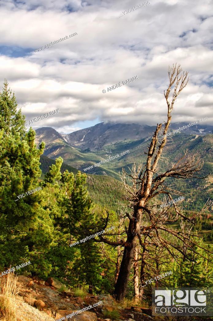 Stock Photo: Rocky Mountain National Park, Colorado.