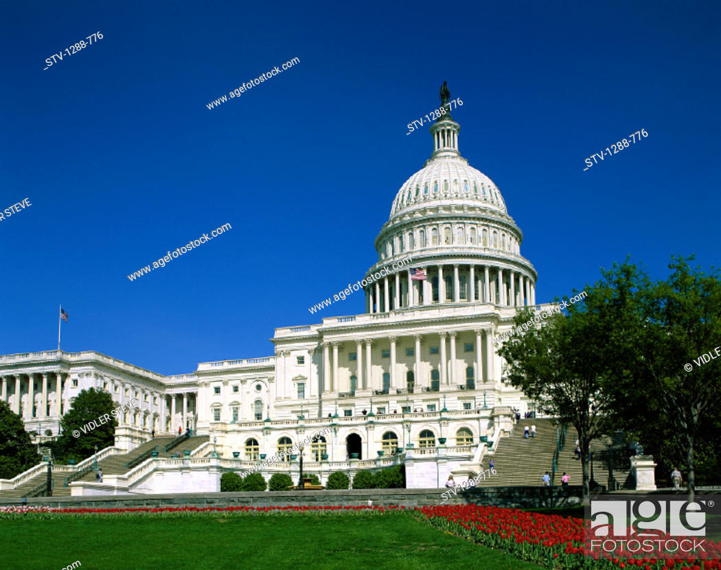 Stock Photo: America, Capitol building, Congress, Dome, Freedom, Government, Holiday, House of representatives, Landmark, Law, Lawn, Order, S.