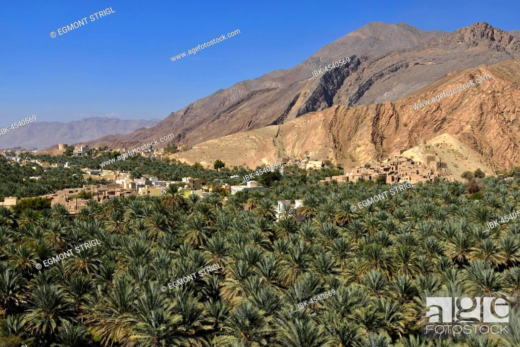 Stock Photo: Birkat al Mawz oasis, Hajar al Gharbi mountains, Dakhiliyah, Oman.