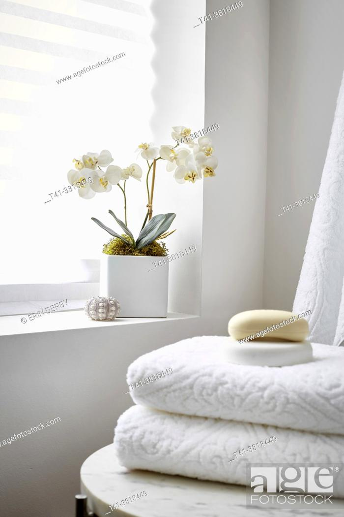 Stock Photo: An orchid in the corner of a spa, an all-white room.