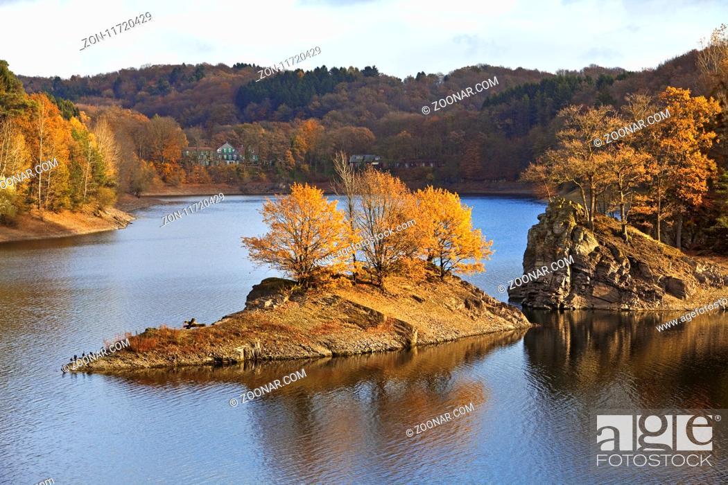 Stock Photo: Wuppertalsperre im Herbst, Remscheid, Bergisches Land, Nordrhein-Westfalen, Deutschland, Europa.