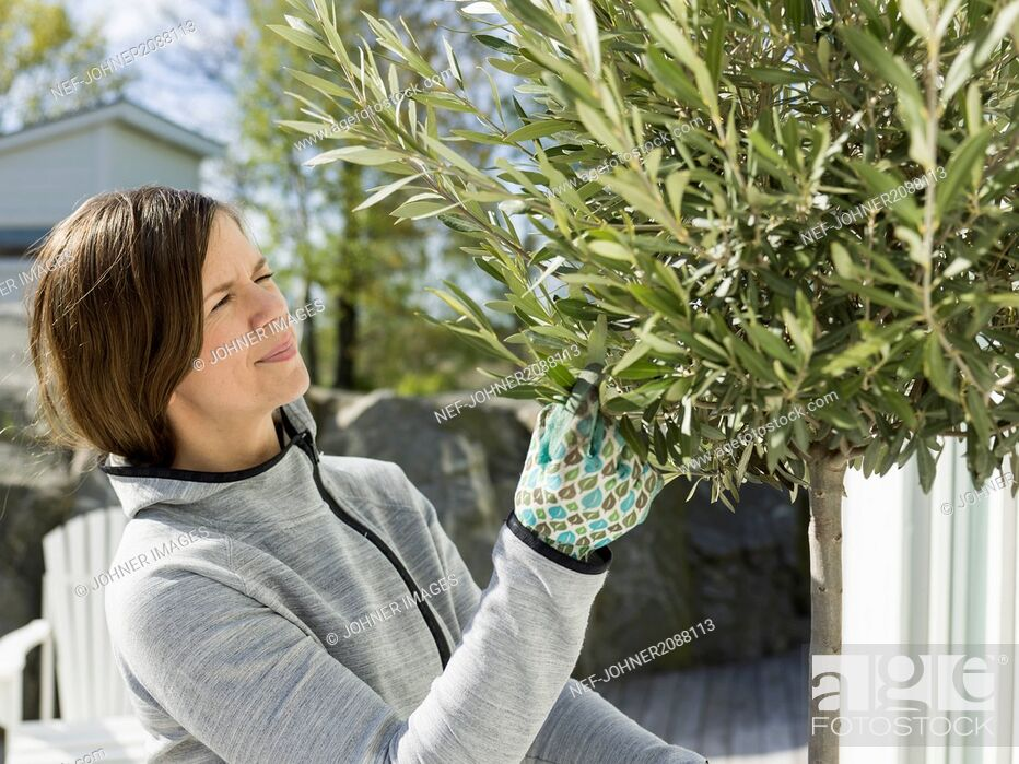 Stock Photo: Mid adult woman gardening.