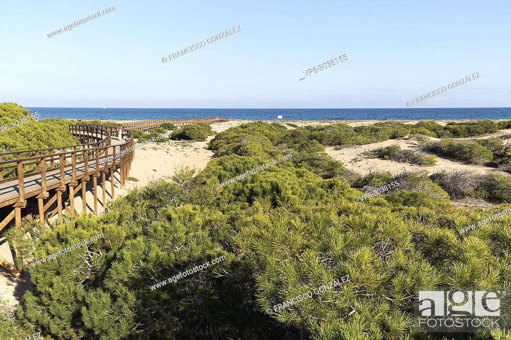 Photo de stock: Wooden walkway in the Arenales del Sol, municipality of Elche, in the province of Alicante in Spain.