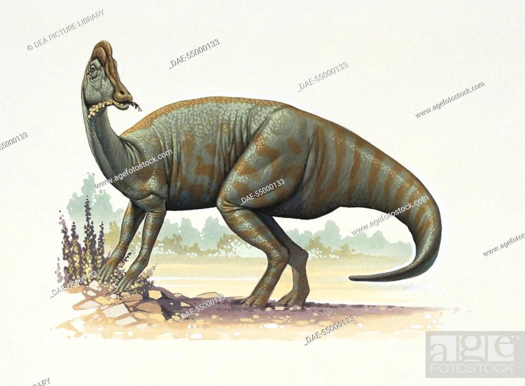 Stock Photo: Palaeozoology - Cretaceous Period - Dinosaurs - Jaxartosaurus (art work by Kevin Lyles).