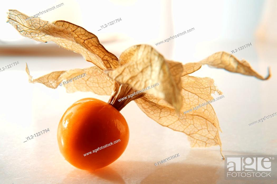 Stock Photo: Fresh Incan Berry - also known as Cape Gooseberry, agauaymanto berries or Goldenberries  source of Vitamin P and bioflavinoids.