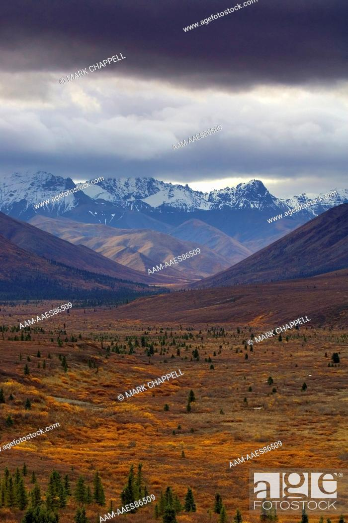 Photo de stock: Alaska Range on a stormy day with fall colors, Denali National Park, Alaska, USA.