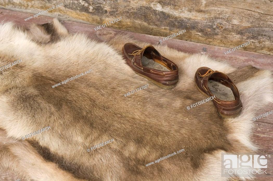 Stock Photo: Animal Skin, Fur, Day, Close-Up, Animal Hair.
