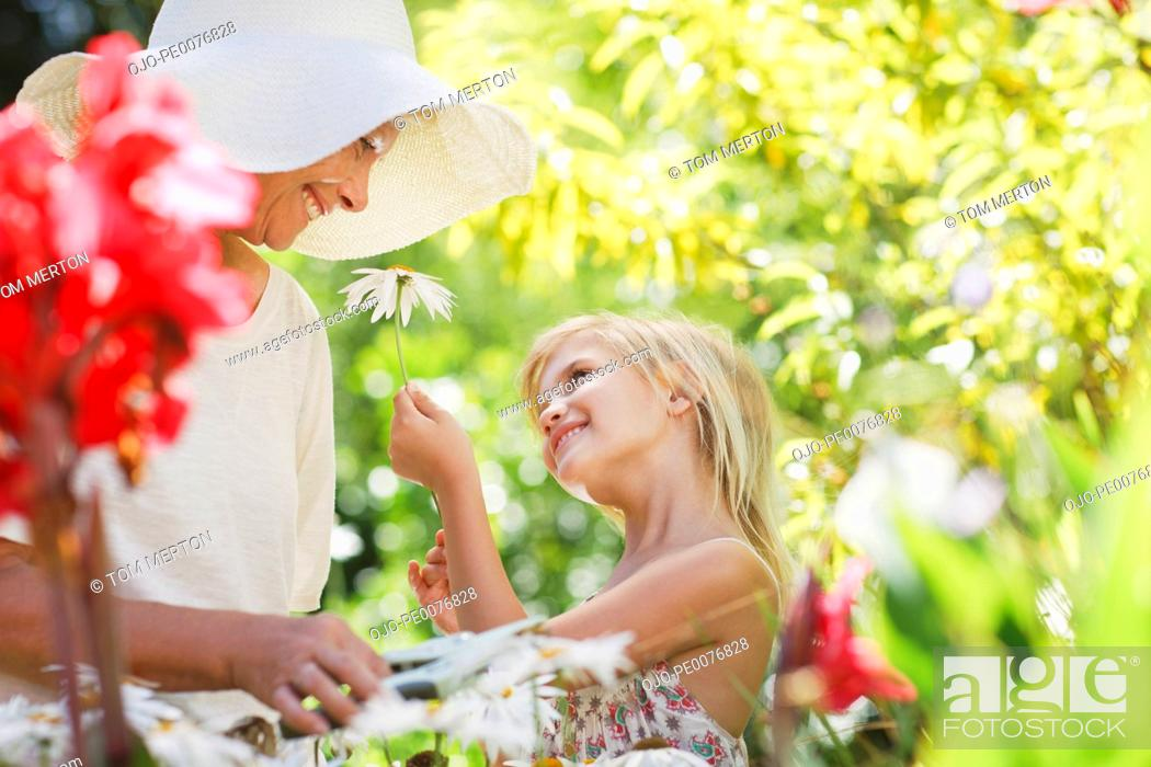 Stock Photo: Grandmother and granddaughter picking flowers in garden.