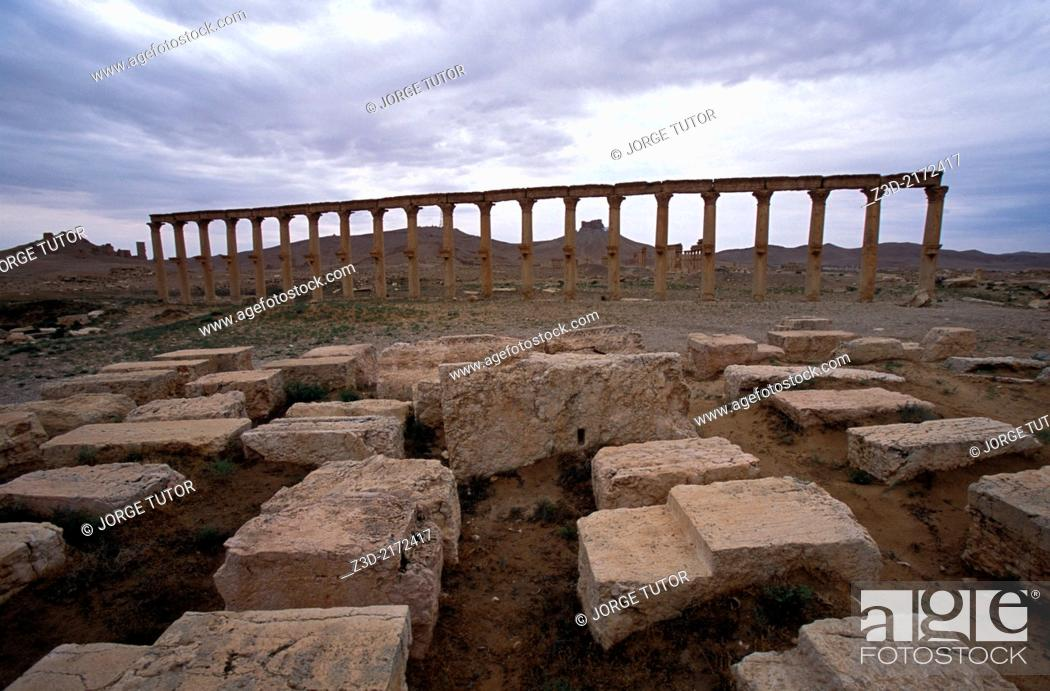Stock Photo: Great Colonnade. Palmyra. Syria.