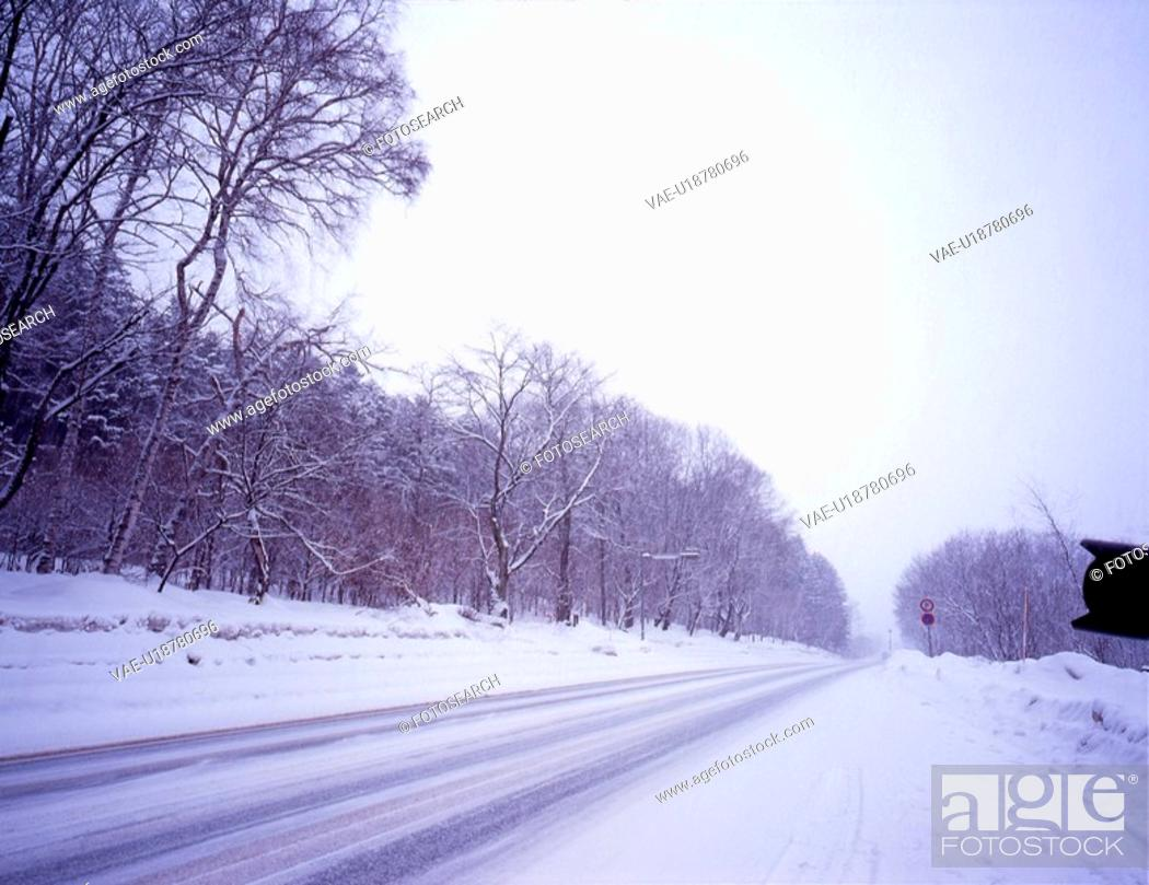 Stock Photo: snow scene, landscape, winter scene, forest, mountain, winter, scenery.