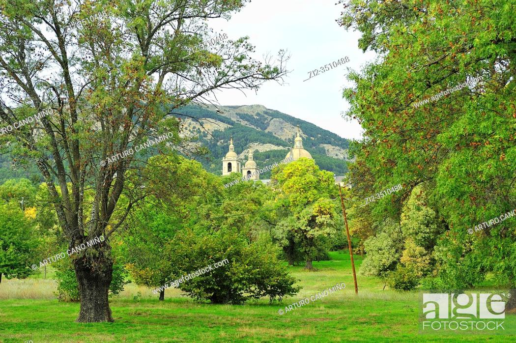 Stock Photo: The Dome and towers of the Monestry of San Lorenzo outstanding among the Forest de La Herreria. San Lorenzo del Escorial town, Madrid province, Spain.