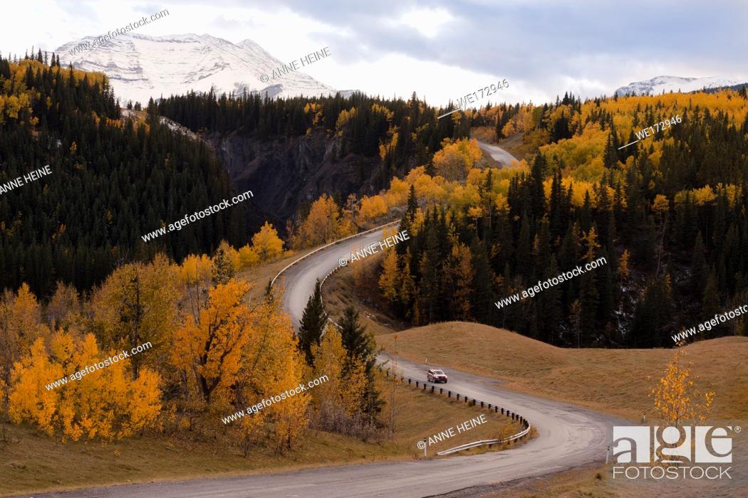 Stock Photo: Road winding along the Sheep River Canyon. Hwy 546. Landscape with fir and aspen in fall. Sheep Valley National Park, Alberta, Canada.