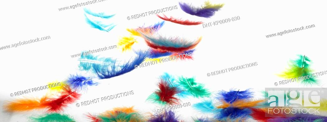 Stock Photo: Colourful Feathers falling onto table.