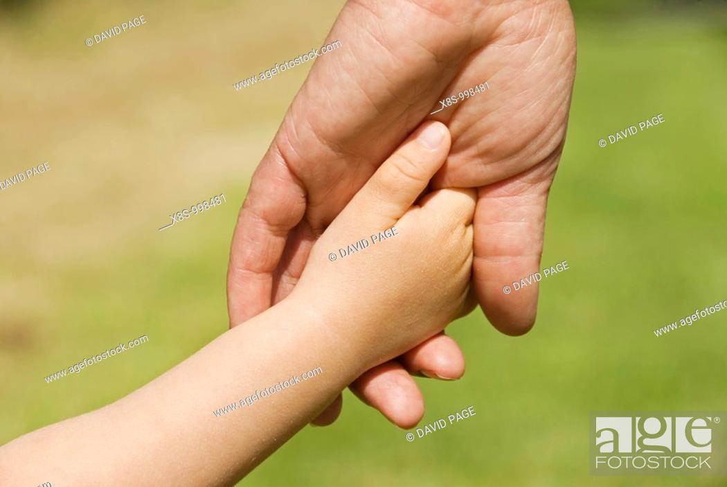 Stock Photo: Stock photo of a young childs hand in the hand of an adult  The photo is taken in close-up.