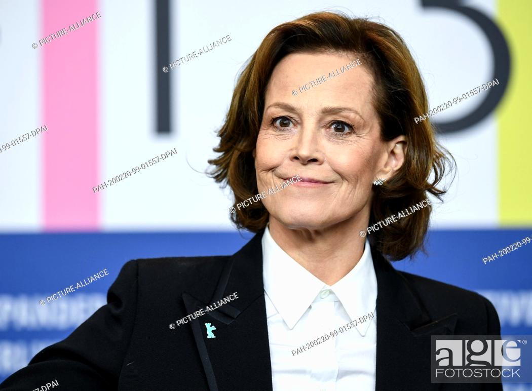 """Stock Photo: 20 February 2020, Berlin: 70th Berlinale, press conference, Berlinale Special Gala, press conference on the film """"""""My Salinger Year""""""""."""