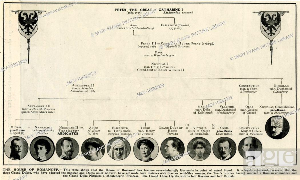 Family Tree Of Peter The Great And Catherine I With Circular