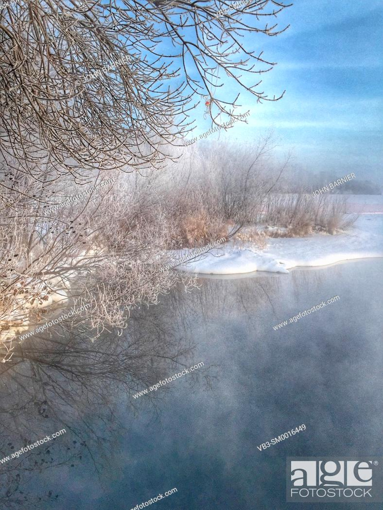 Stock Photo: Hoarfrost on trees and weeds around Lake Harriet in Minneapolis, Minnesota USA.