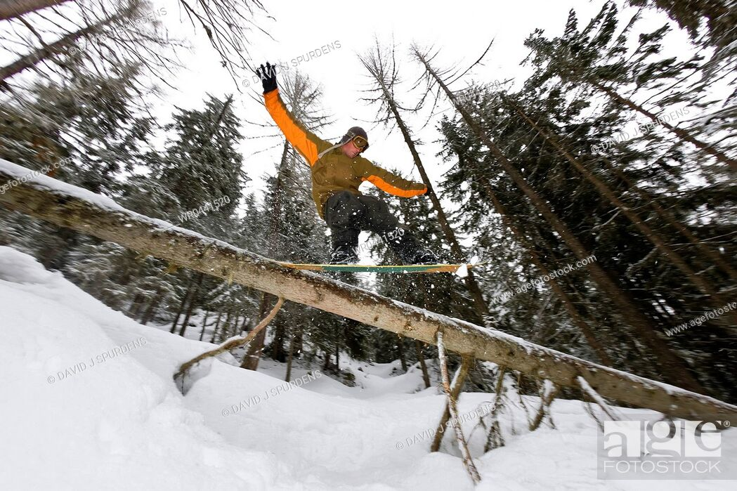 Stock Photo: A snowboarder riding the back country sliding a fallen tree.