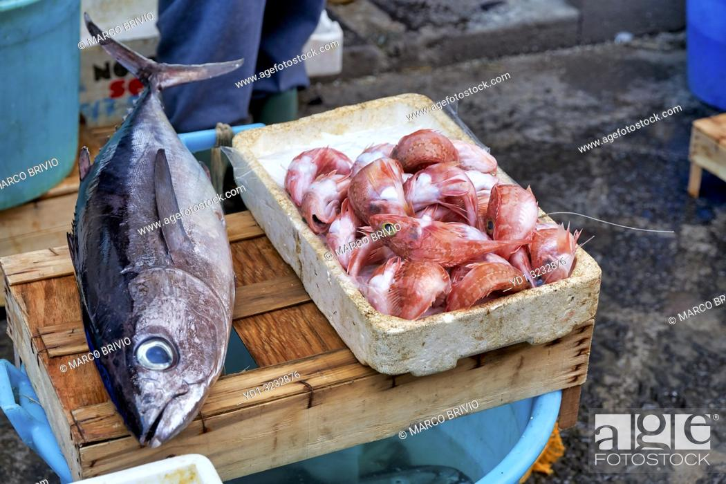 Stock Photo: Piscaria, the street daily market in Catania Sicily Italy. Fresh fish, meat, vegetables.