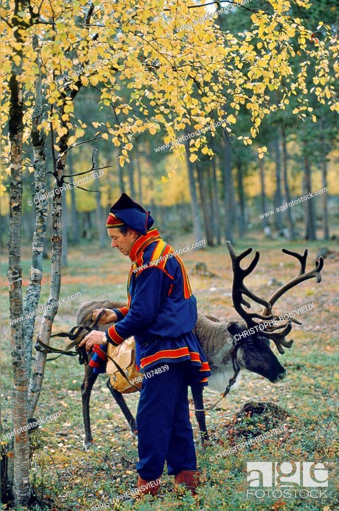 Stock Photo: Finland, Lapland, Inari, Lapp reindeer breeder.