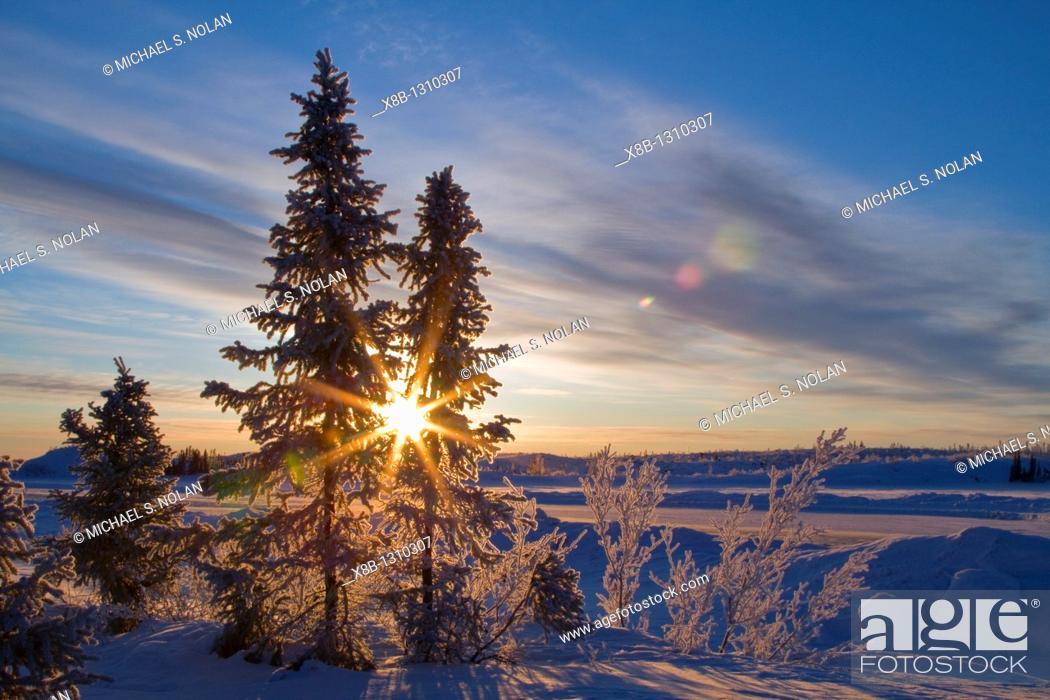 Stock Photo: Views of the boreal forest north of Yellowknife, Northwest Territories, Canada.
