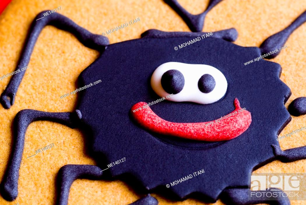 Stock Photo: close up of a cookie with a spider shape on it.