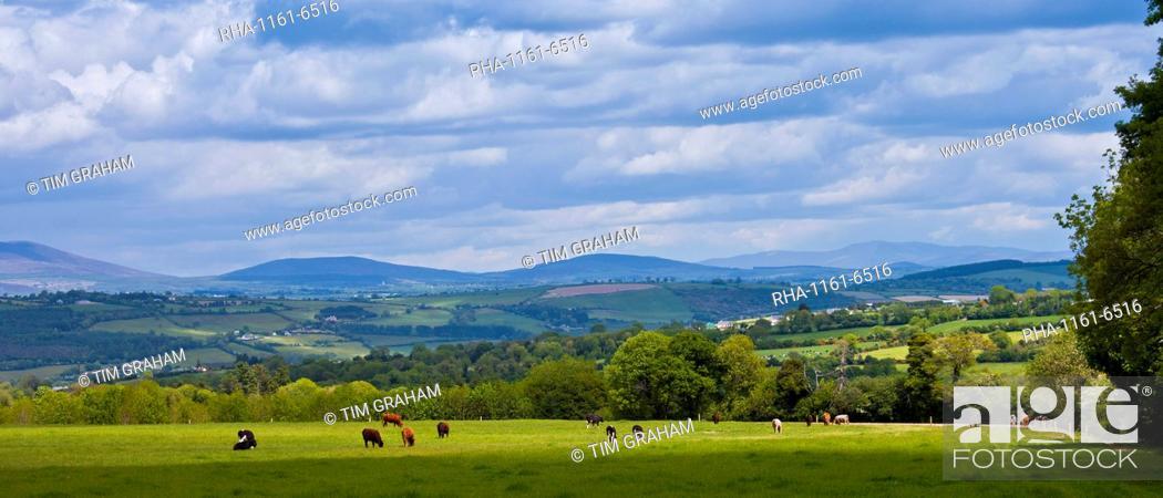 Stock Photo: Distant view of Knockmealdown Mountains at Glengoura, County Cork, Ireland.