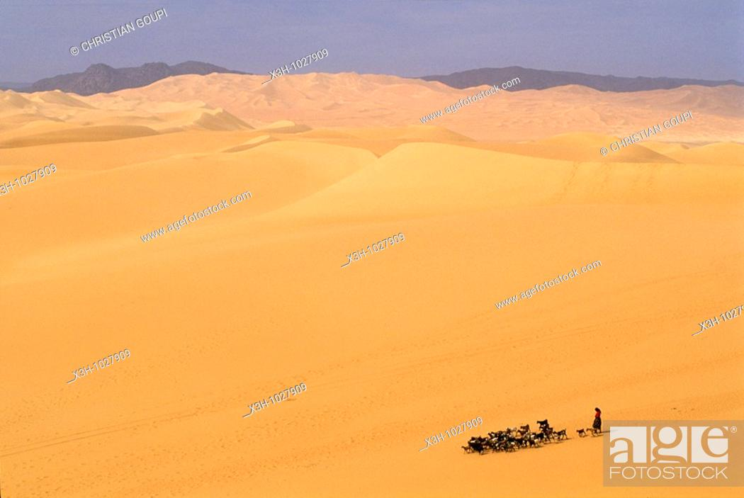 Stock Photo: shepherdess and herd in vastness of Arakao's dunes,Aïr,Niger,Western Africa.