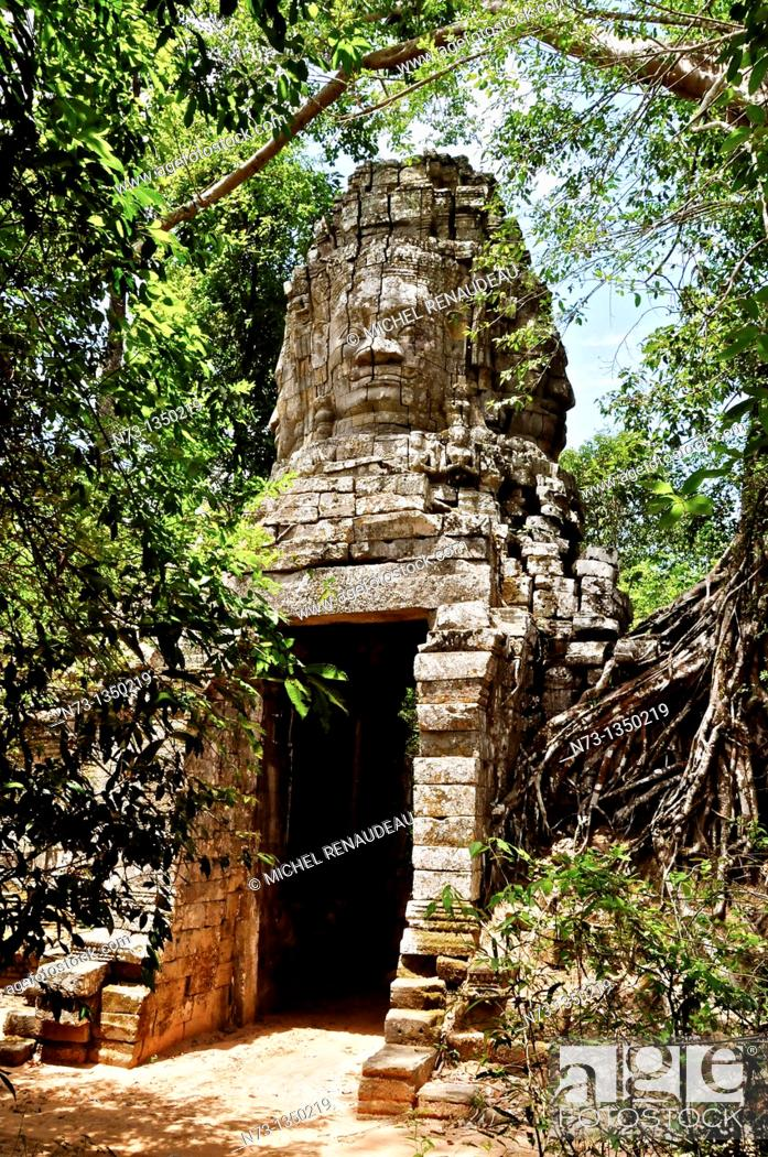 Stock Photo: Cambodia, Siem Reap Province, Angkor classified World Heritage by UNESCO, the temple of Ta Prohm, built in 1186 by King Jayavarman VII.