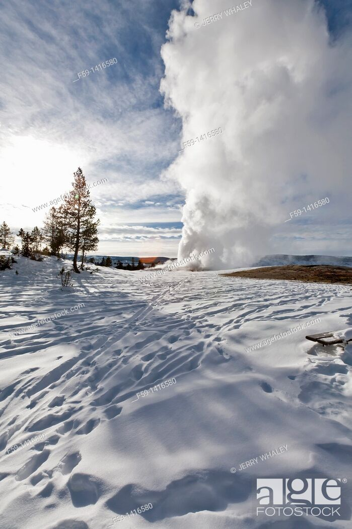 Stock Photo: Old Faithful Geyser, Winter, Yellowstone NP, WY.