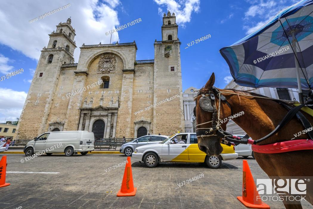 Stock Photo: San Idelfonso cathedral, Colonial church in Merida, Yucatan (Mexico, Central America).
