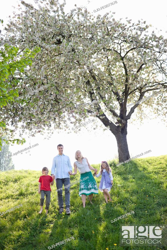 Stock Photo: Family walking together under tree in park.